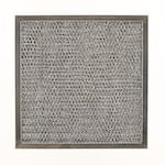 American Metal Filter RHF1006 Aluminum Air Filter