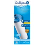 Culligan RV-500A Comp Inline RV Carbon Filter-10""