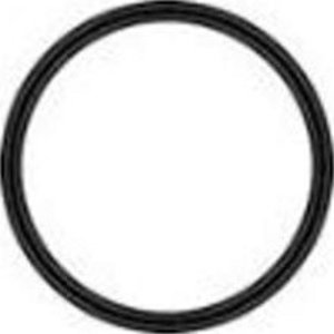 Pentek O Ring Gasket For St Bc Stainless Series Sale 64 94