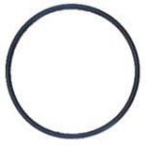 Everpure EV310214 - Replacement O-ring